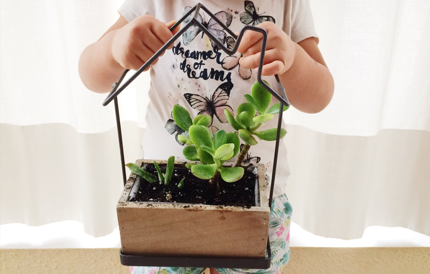 child holding succulant plants in a flower pot shaped like a house