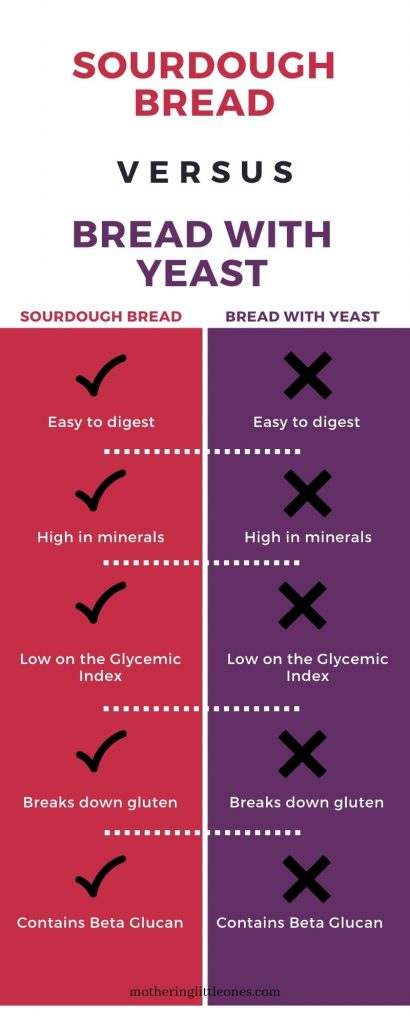 7 Reasons Why Sourdough Is the Healthiest Bread Infographic