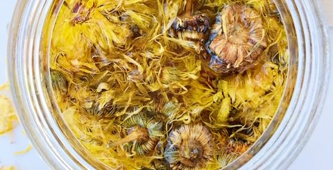 dried calendula flowers in olive oil taken from above in a glass jar